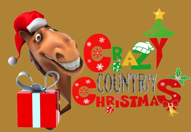 this is christmas in dixie with a fun twist a great mixture of comedy and holiday classics for the whole family this show features the fun christmas songs - Redneck Christmas Songs